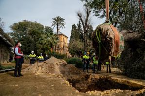 El presidente de la Junta de Andalucía, Juanma Moreno, participa en la plantación simbólica con motivo del Día de Andalucía