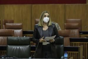 Marifrán Carazo, consejera de fomento y vivienda de las Junta de Andalucía durante su intervención en el Pleno del Parlamento Andaluz